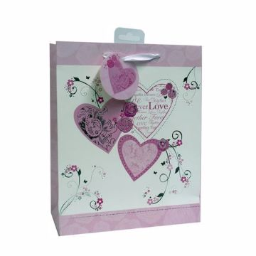 Picture of GIFT BAGS DX MEDIUM