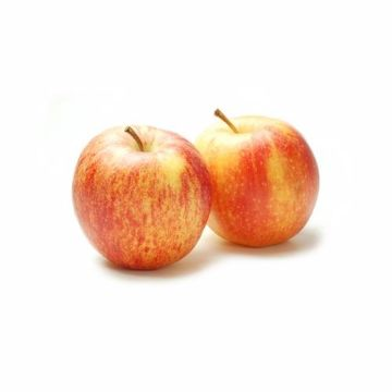 Picture of APPLE ROYAL GALA 500G