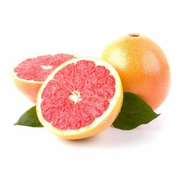 Picture of GRAPEFRUITS 500G