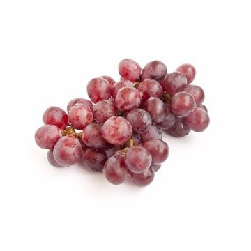 Picture of GRAPES RED GLOBE 500G