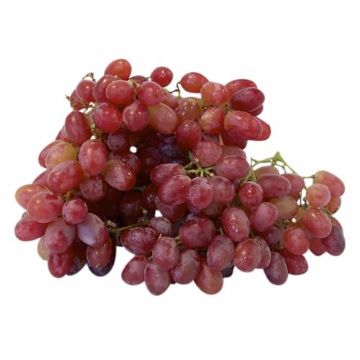 Picture of GRAPES RED SEEDLESS 500G