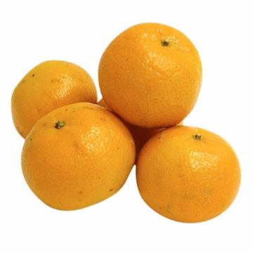 Picture of MANDARINE 500G