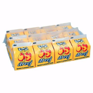 صورة AREEJ MANGO DRINK 12X225ML